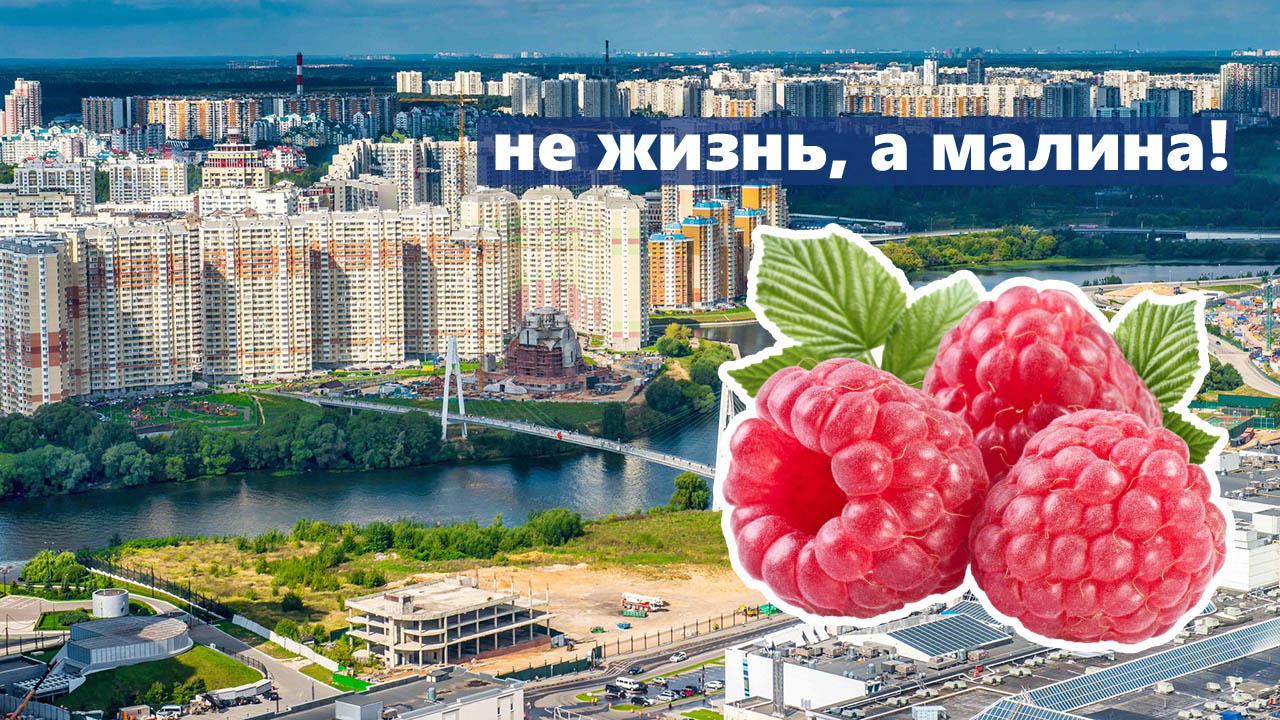 Не жизнь, а малина! Что хорошего и что плохого в Красногорске?